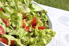Free Salad Stock Photos - 959493