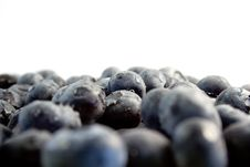 Free Blueberries Stock Image - 959861