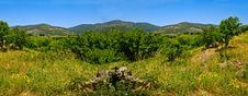 Free Mountains Royalty Free Stock Photo - 9501445
