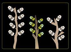 Free Tree Stock Image - 9505101