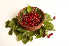 Free Basket Full Cherry  S Stock Image - 9505671