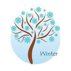 Free Seasonal Tree Royalty Free Stock Photos - 9506638
