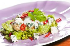 Free Grilled Chicken Salad Stock Images - 9509964