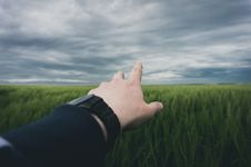Free Hand Reaching Out To Field Royalty Free Stock Photo - 95031445