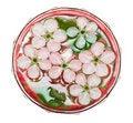 Free Spring Flowers Of Sakura Stock Images - 9512654