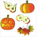 Free Set Of Autumn And Halloween Icons Royalty Free Stock Photography - 9514647