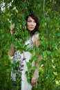 Free Girl In A Birchwood Stock Photography - 9515652