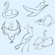 Birds Design Set Stock Photography