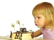 Free Unusual Spring Pie Stock Image - 9510811