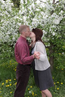 Free Kiss In Park Stock Photos - 9512873