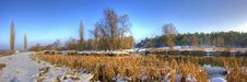 Free Winter Panorama Royalty Free Stock Photography - 9512917