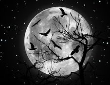 Vector Moon Illustration And Birds Stock Images