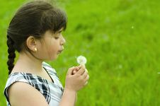 Free Girl With Dandelion Royalty Free Stock Image - 9514226