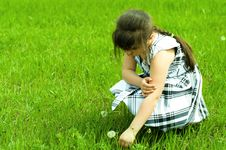 Free Girl With Dandelion Royalty Free Stock Images - 9514339