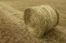 Free Bales In The Countryside Royalty Free Stock Image - 9514586