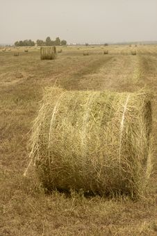 Free Bales In The Flat Countryside Stock Images - 9514704
