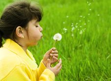Free Girl With Dandelion Royalty Free Stock Photos - 9515068