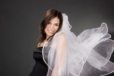 Free Bride Stock Photos - 9516353