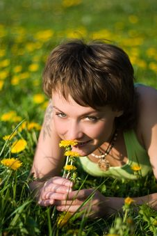 Free Dandelions Glade Stock Photography - 9519032