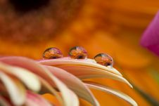 Three Water Drops Stock Photography