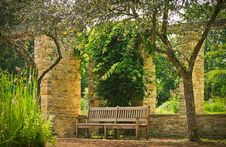 Free Bench Between The Two Trees Royalty Free Stock Photography - 95165377