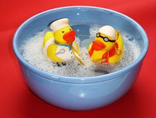 Free 2 Rubber Ducky On Blue Ceramic Bowl Royalty Free Stock Image - 95165586