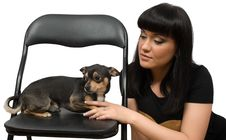 Chihuahua Pet And Brunette Female Isolated Stock Photos