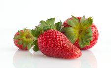 Free Strawberry Royalty Free Stock Photography - 9524287