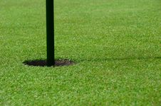 Free Golfing Stock Photo - 9525750