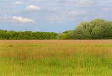 Free Meadow Stock Images - 9526244