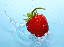 Free The Strawberries In Drop. Royalty Free Stock Images - 9527599