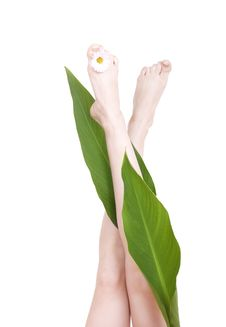 Feet With Petals Stock Photo