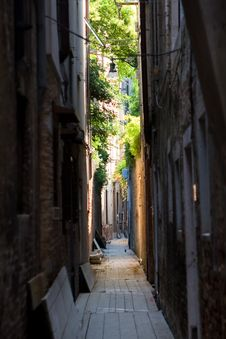 Free Street Lane In Venice In Summer Stock Image - 9529401