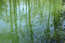 Free Water Texture With Distorted Green Reflections Royalty Free Stock Photos - 95220758