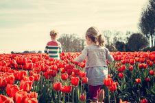 Free 2 Kids Walking On Red Tulip Garden Under Blu Sky Royalty Free Stock Images - 95271889
