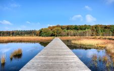 Free Jetty On Lake In Countryside Royalty Free Stock Photo - 95272405