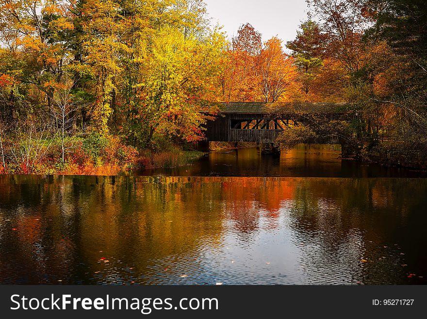 Covered bridge over river in autumn