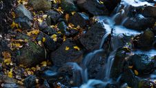 Free Water, Nature, Rock, Stream Stock Images - 95283624