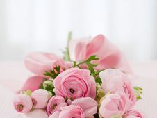 Free Flower, Pink, Rose Family, Flower Arranging Royalty Free Stock Photography - 95283747
