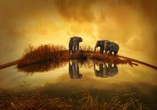 Free Sky, Organism, Wildlife, Computer Wallpaper Royalty Free Stock Photo - 95284065