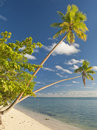 Free Island In South Pacific Royalty Free Stock Photo - 9531615