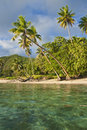 Free Island In South Pacific Royalty Free Stock Photography - 9531627