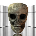Free Skull With Cigarettes Royalty Free Stock Photos - 9538568