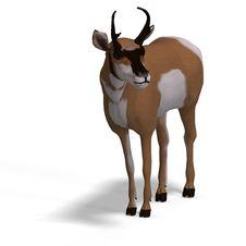Free Antelope Stock Images - 9532384