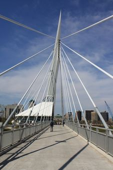 Free Cable Pedestrian Bridge Royalty Free Stock Images - 9533019