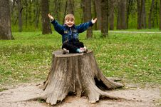 Free Little Boy In Wood Royalty Free Stock Photos - 9534338