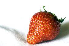Free Strawberry Stock Image - 9537771