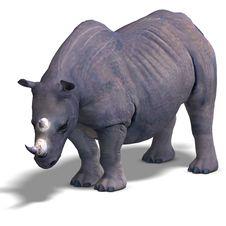 Free Rhinoceros Rendering Stock Photos - 9537913