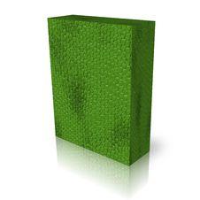 Free Blank Green Snake Fur Box Template Stock Image - 9538241