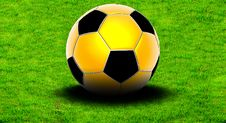 Free Soccer Ball On The Grass Royalty Free Stock Image - 9538486